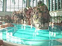 鶴見緑地 プール